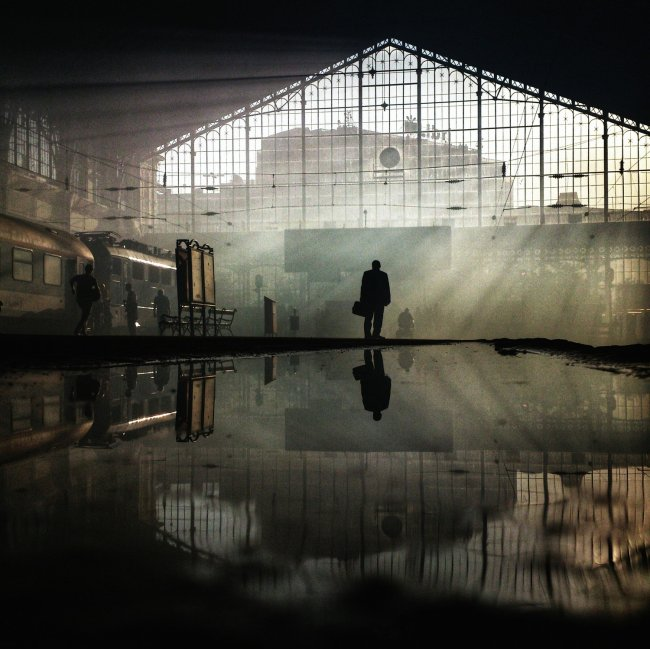 Победители Sony World Photography Awards 2015 среди любителей
